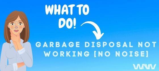 garbage disposal not working no noise