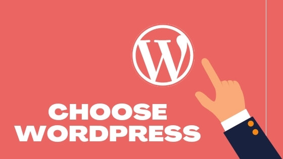 Choose WordPress to Become a Successful Blogger